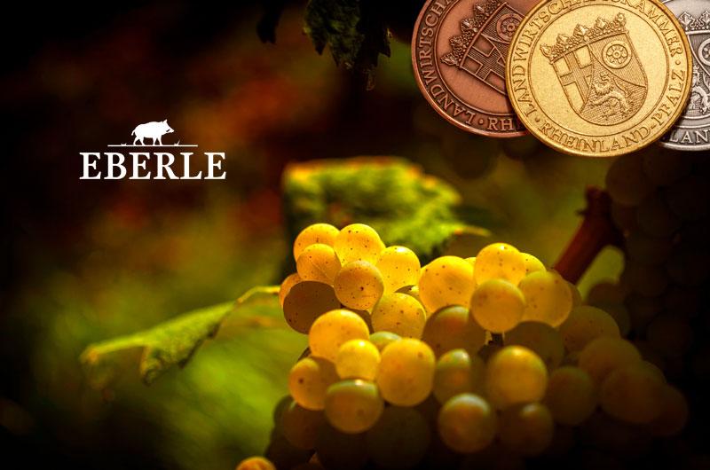 Brennerei im Weingut Eberle in Burrweiler