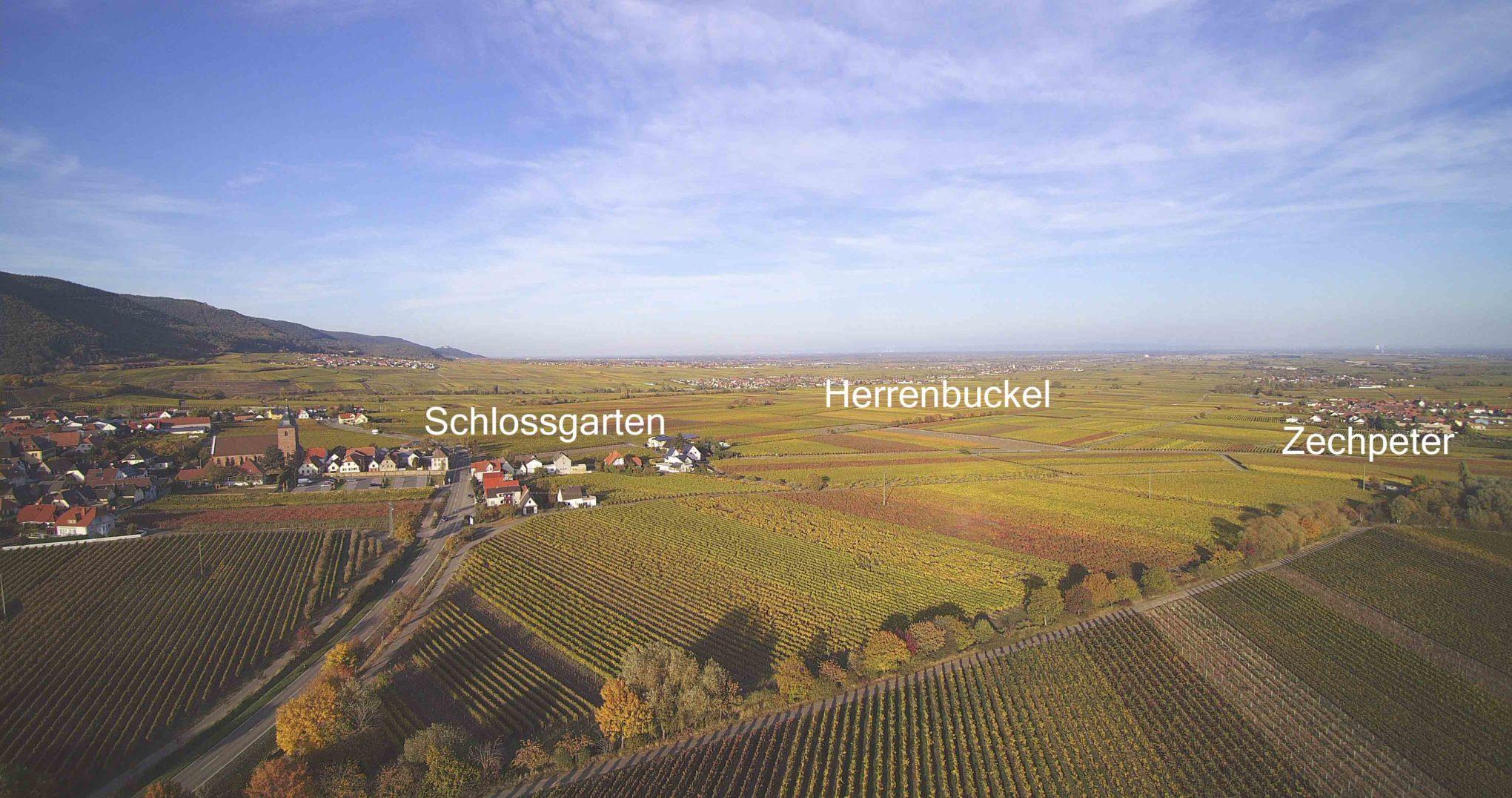 Herrenbuckel Zechpeter und Schlossgarten